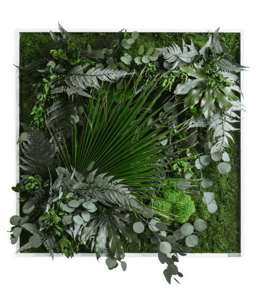 plant pictures with jungle design 80x80cm solid wood frame (white)